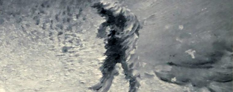 Spectral figure of Arctic explorer